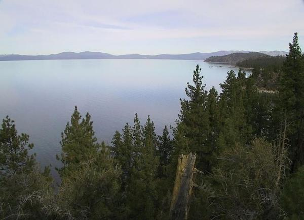Lake Tahoe with pine trees